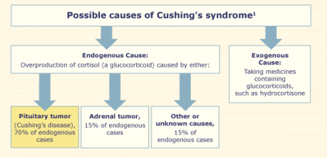 cushings-causes